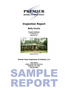 Sample Report 1